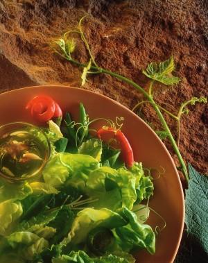 Fresh Gourmet Salad